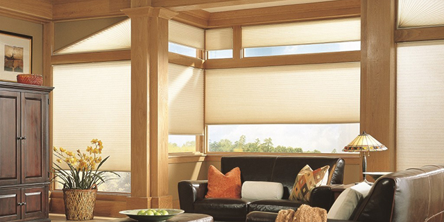 Interior Window Treatments